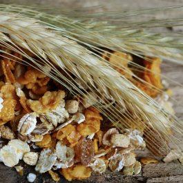 cereals-2437808_640
