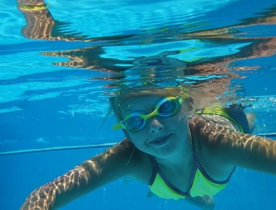 diving-1864455_640