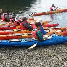 kayaking-1849871_640